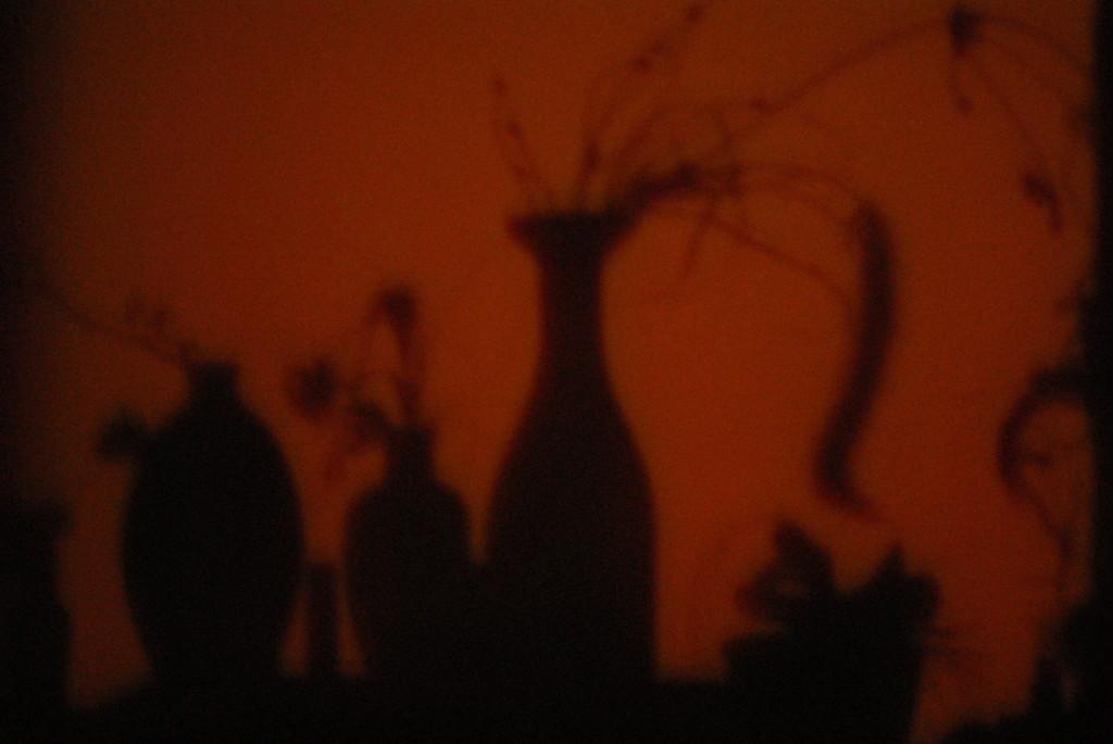 geprojecteerde schaduw foto:kistje:licht 2011